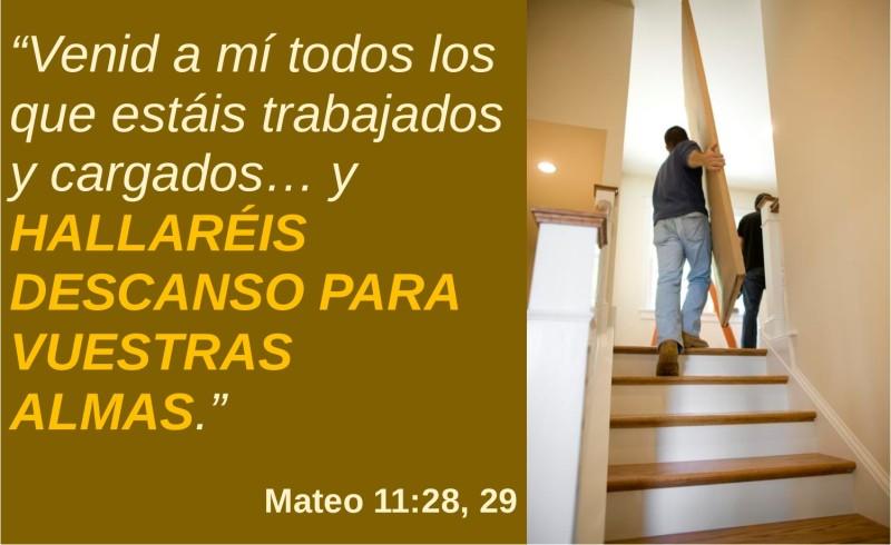 Mateo 11.28-29