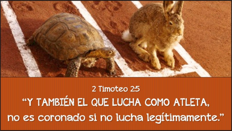 2 Timoteo 2.5