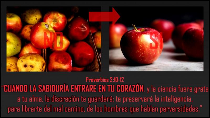 Proverbios 2.10-12