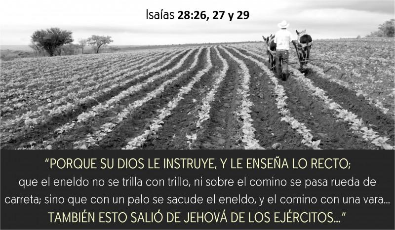 Isaías 28.26-29