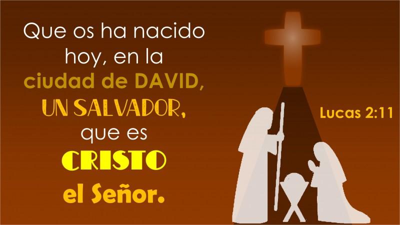 Lucas 2.11