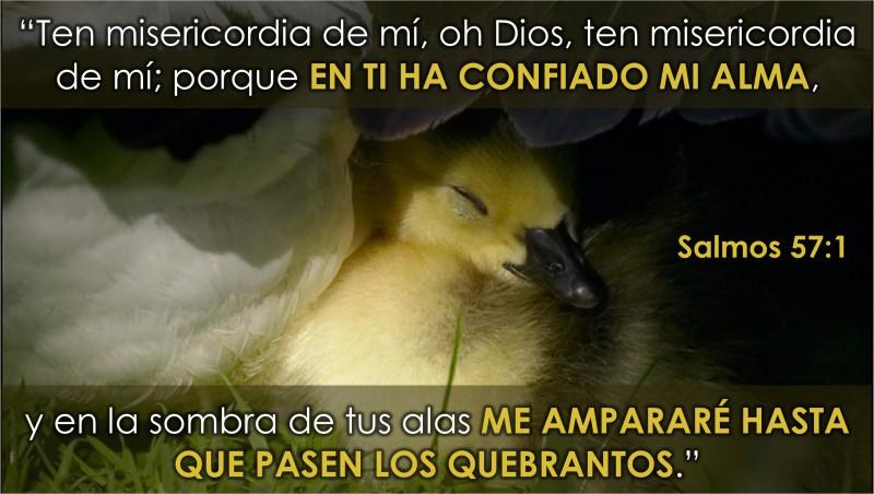 Salmos 57.1