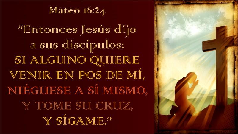 Mateo 16.24