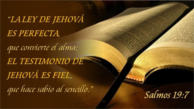 Salmos 19.7