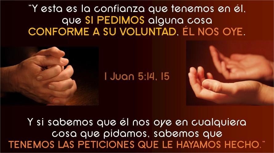 1 Juan 5.14-15