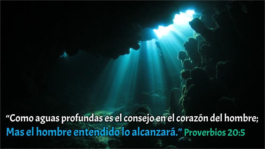 Proverbios 20.5