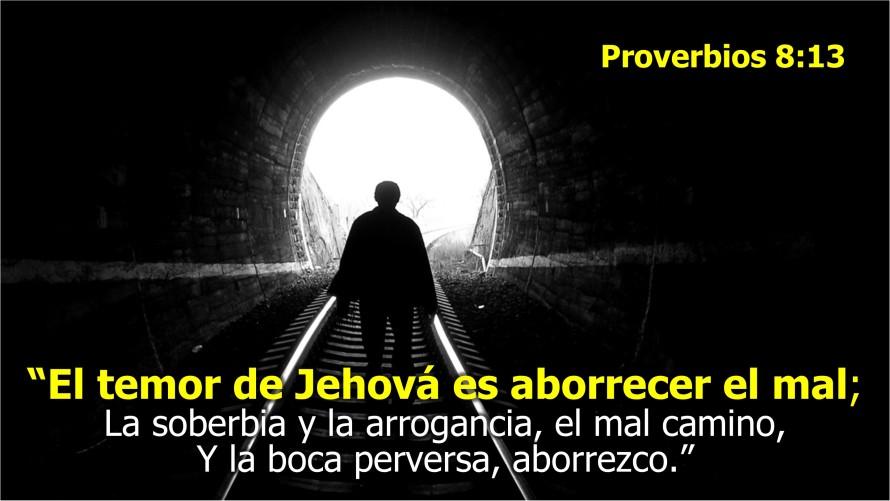 Proverbios 8.13