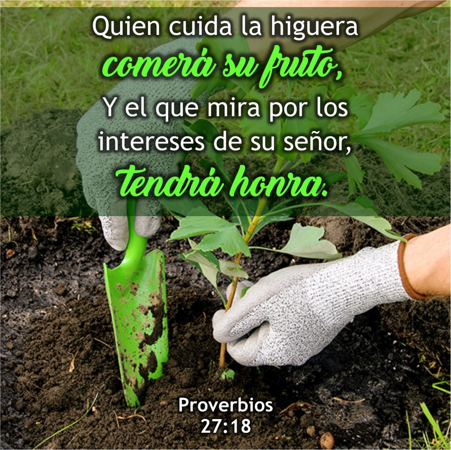proverbios-27-18-anexo