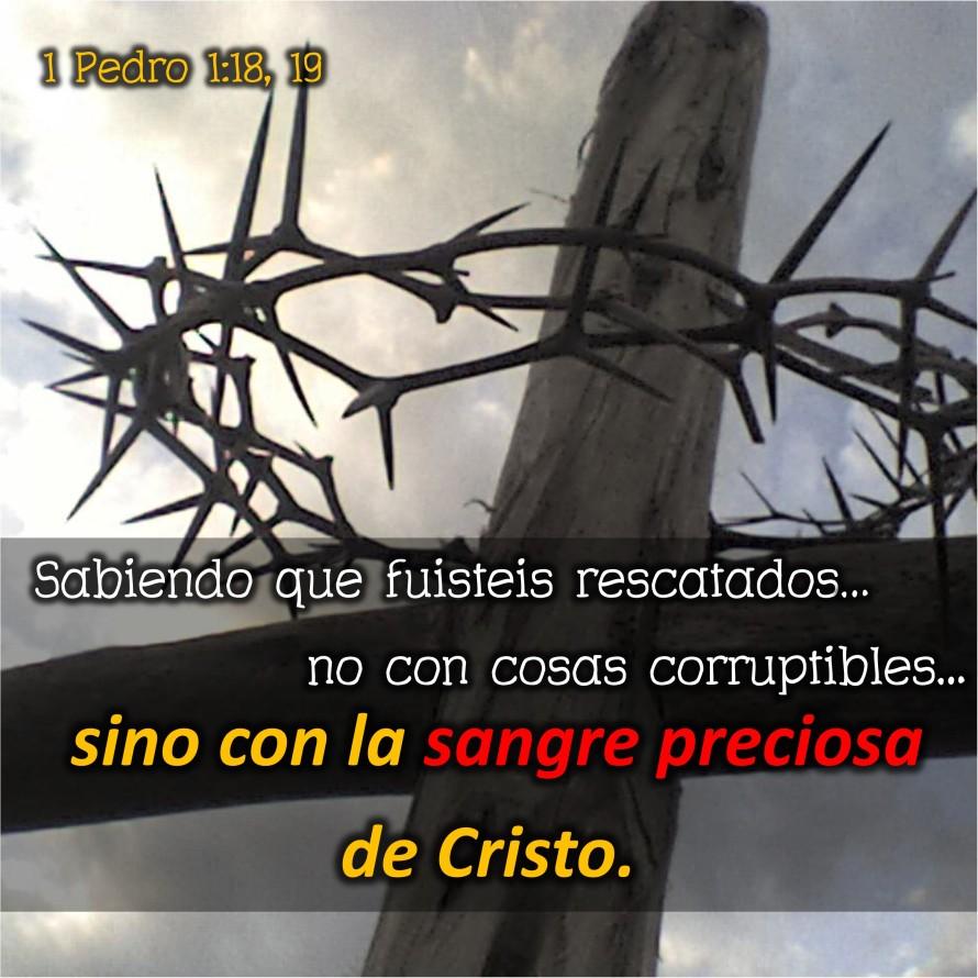 1 Pedro 1.18-19 Anexo
