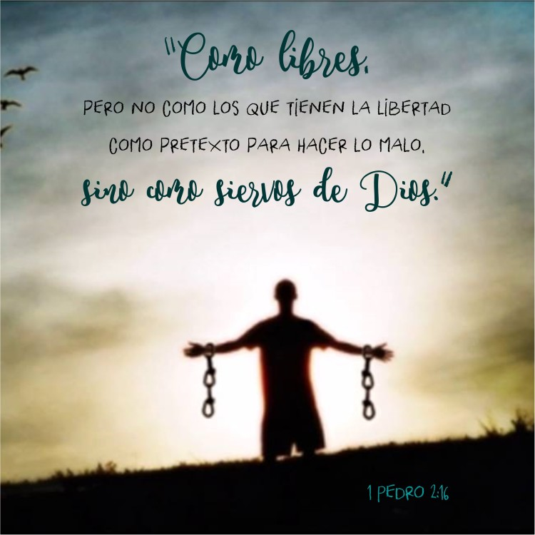 1 Pedro 2.16 Anexo