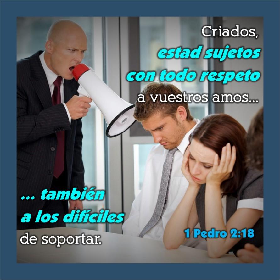 1 Pedro 2.18 Anexo