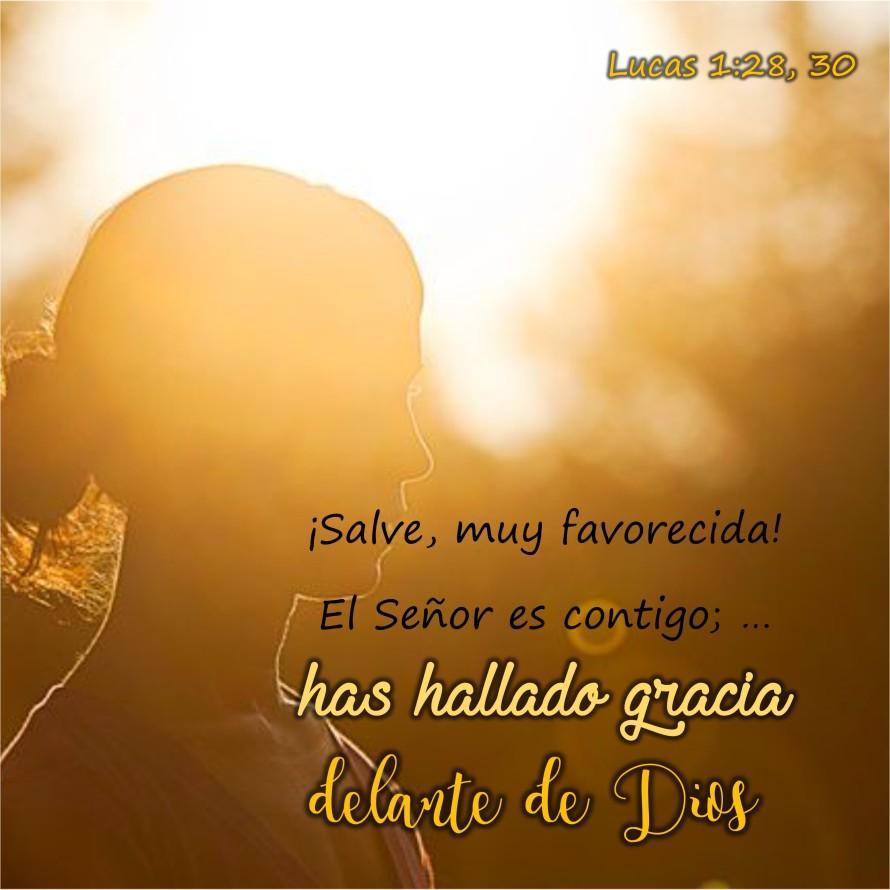 Lucas 1.28 y 30 Anexo