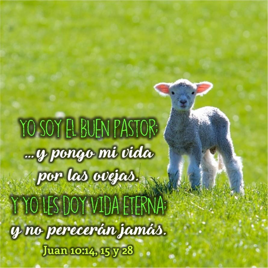 Juan 10.28 Anexo