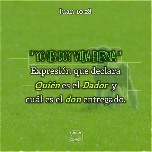Juan 10.28 Color