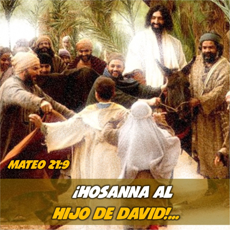Mateo 21.9 Anexo