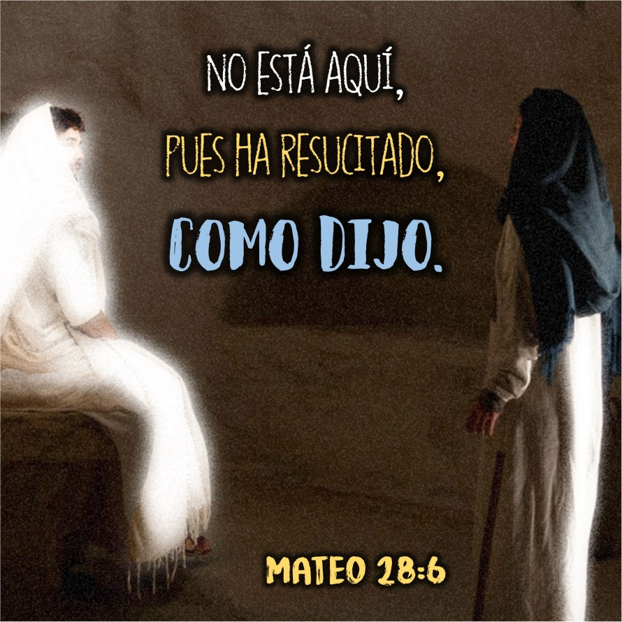Mateo 28.6 Anexo