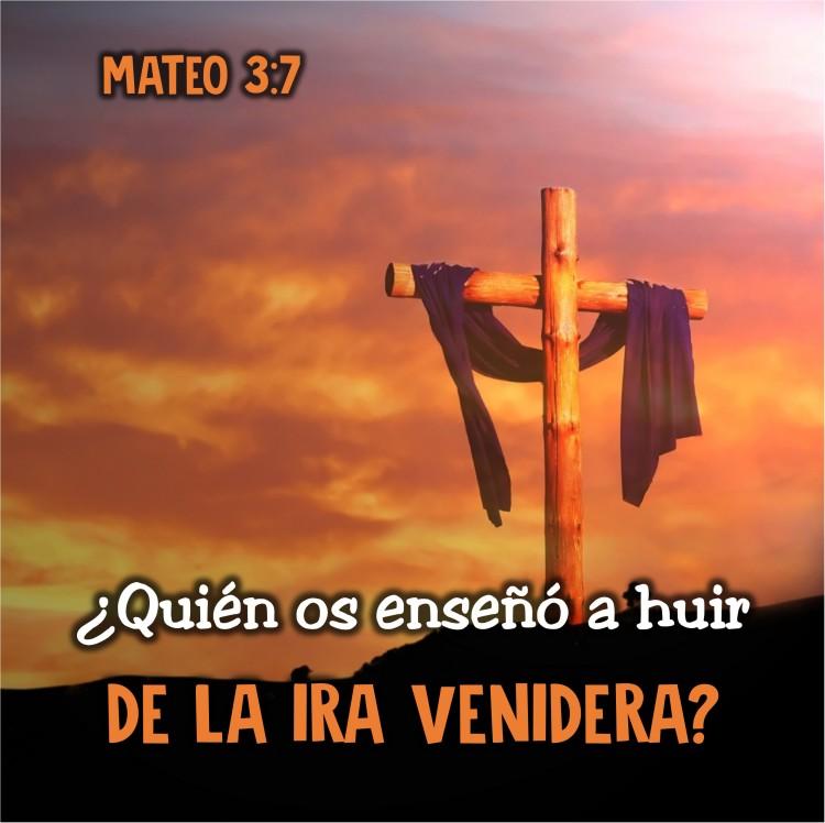 Mateo 3.7 Anexo