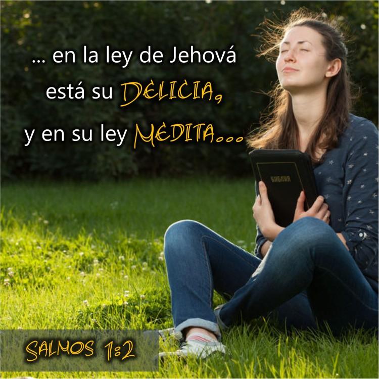 Salmos 1.2 Anexo