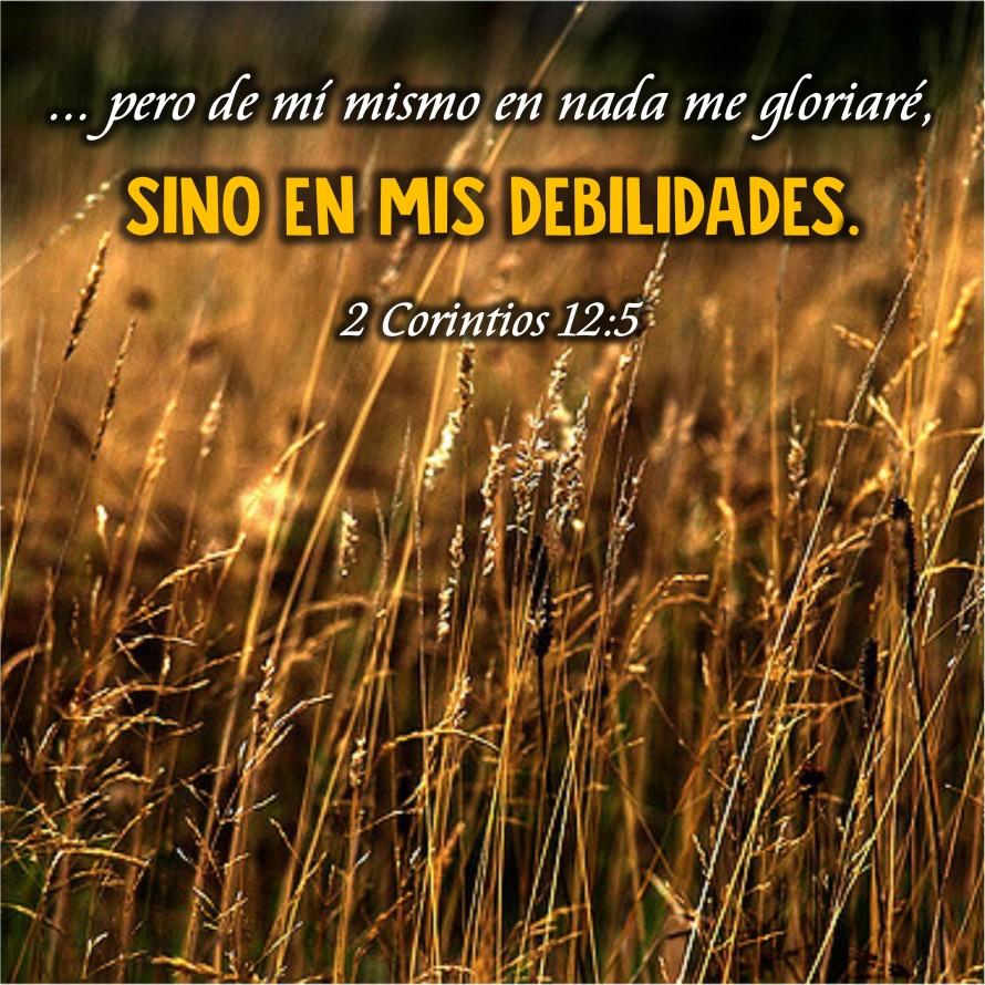 2 Corintios 12.5 Anexo