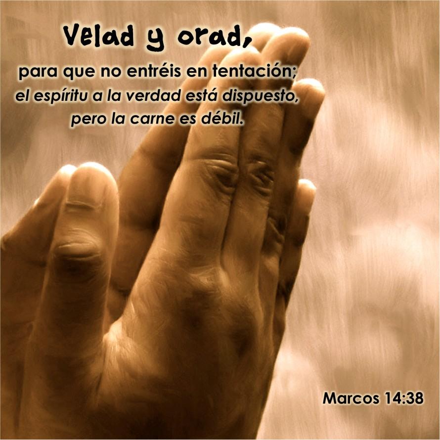 Marcos 14.38 Anexo