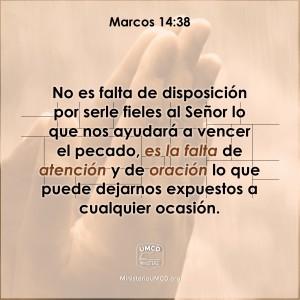 Marcos 14.38 Color
