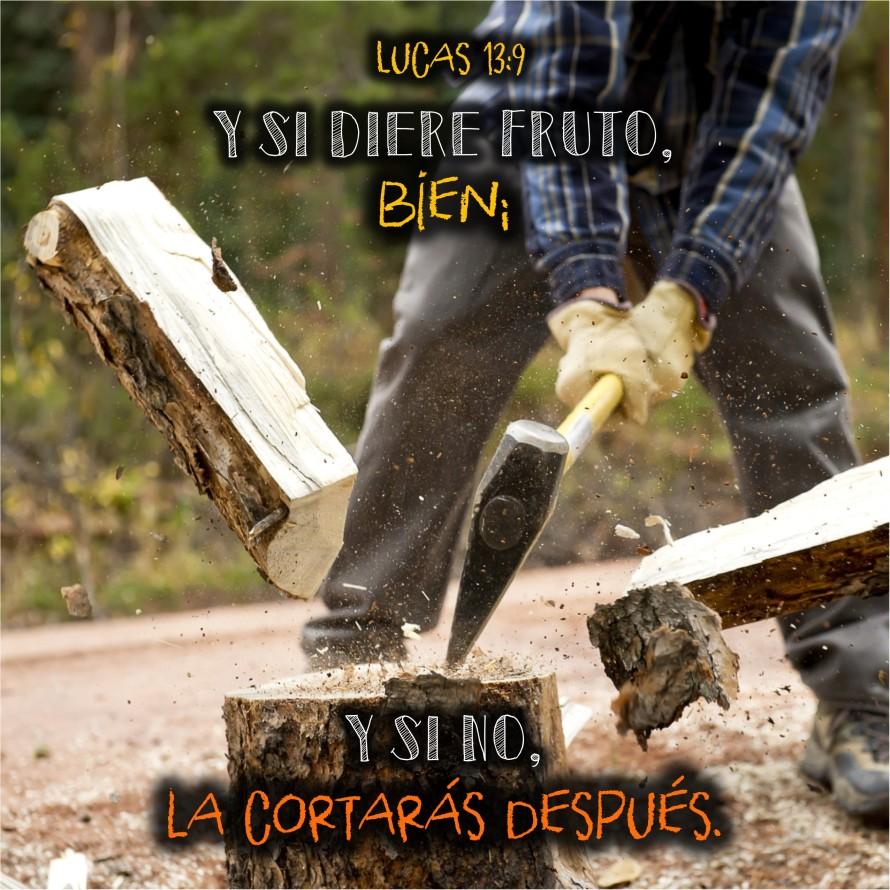 Lucas 13.9 Anexo