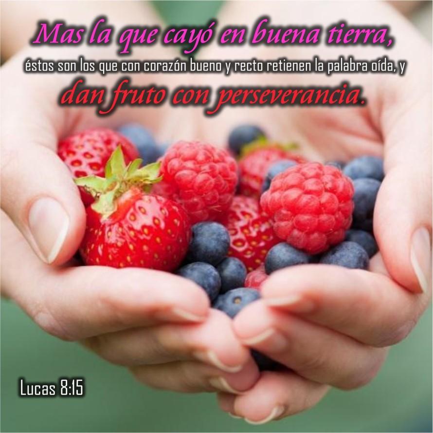 Lucas 8.15 Anexo