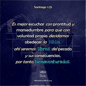 Santiago 1.25 Color