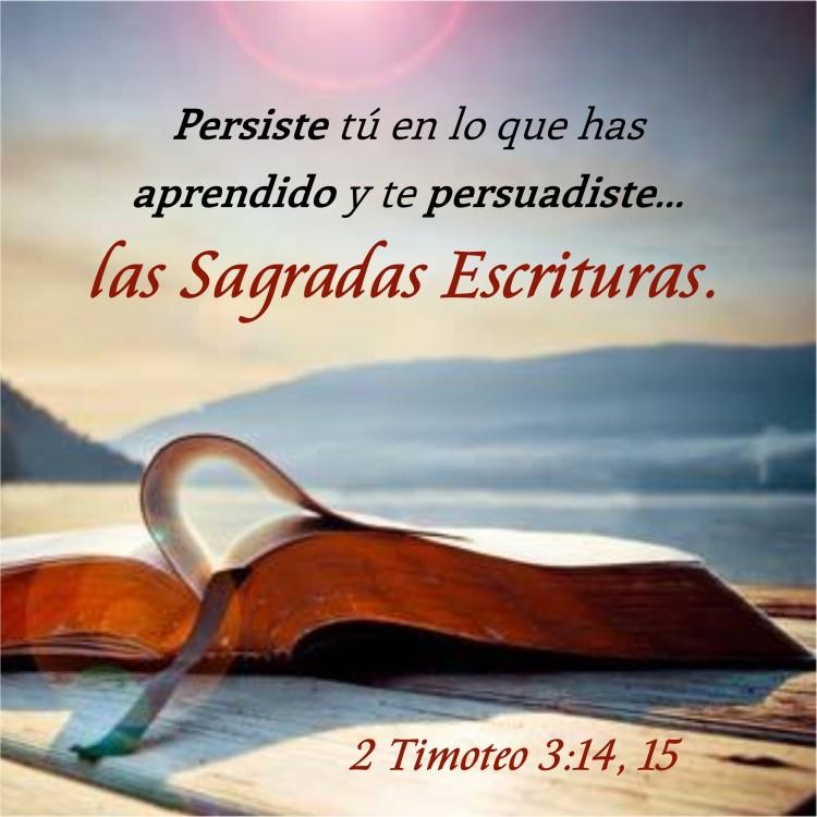 2 Timoteo 3.14, 15 Anexo