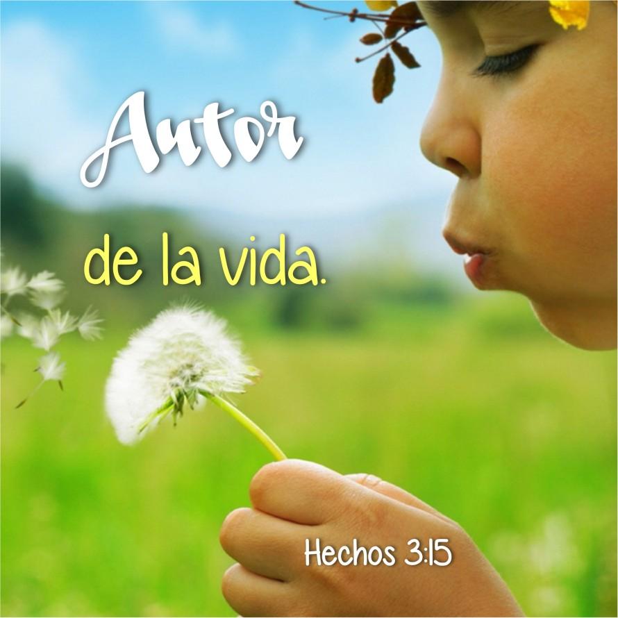 Hechos 3.15 Anexo