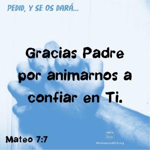 Mateo 7.7 Color