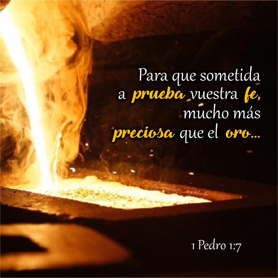 1 Pedro 1.7 Anexo