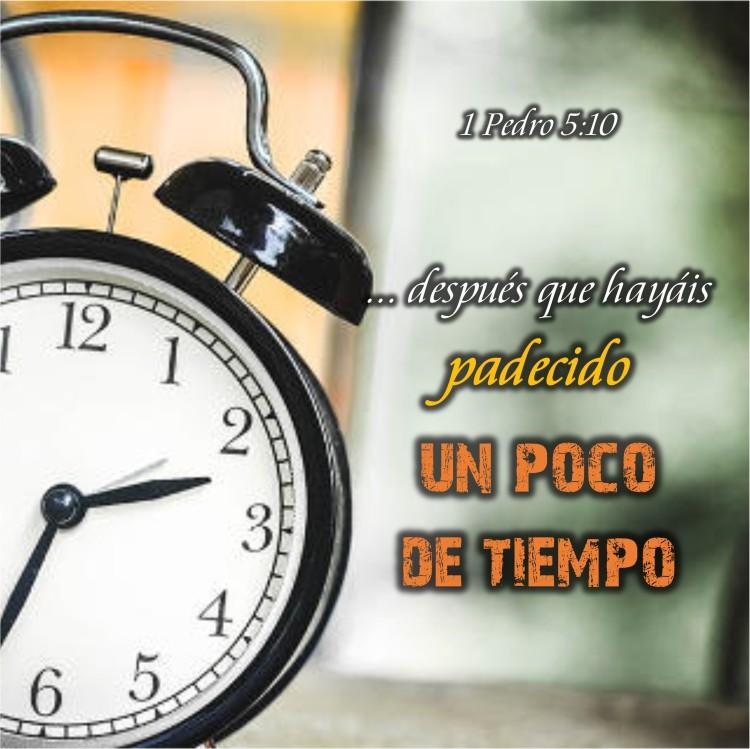 1 Pedro 5.10 Anexo