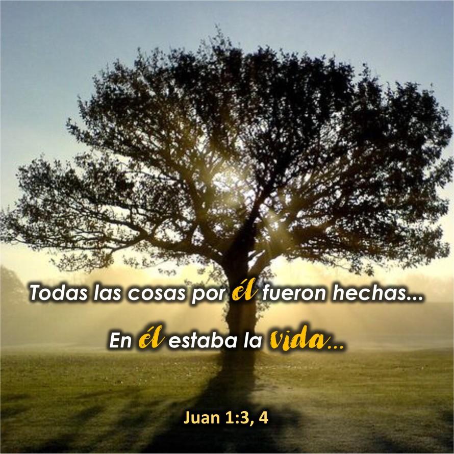 Juan 1.3-4 Anexo