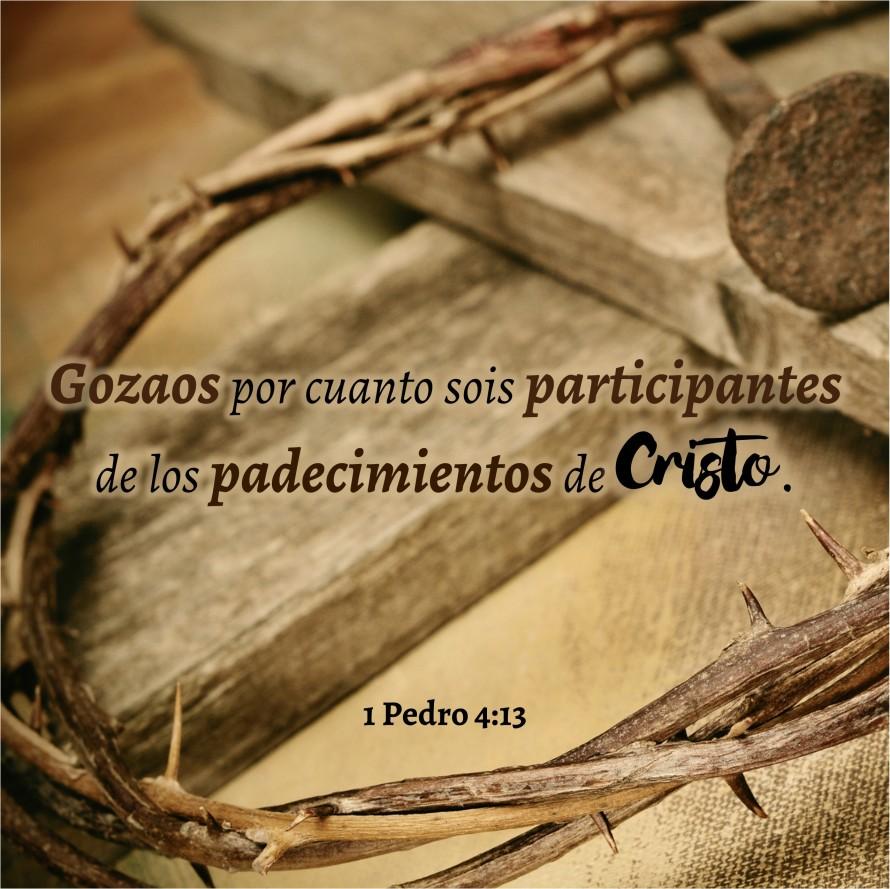 1 Pedro 4.13 Anexo