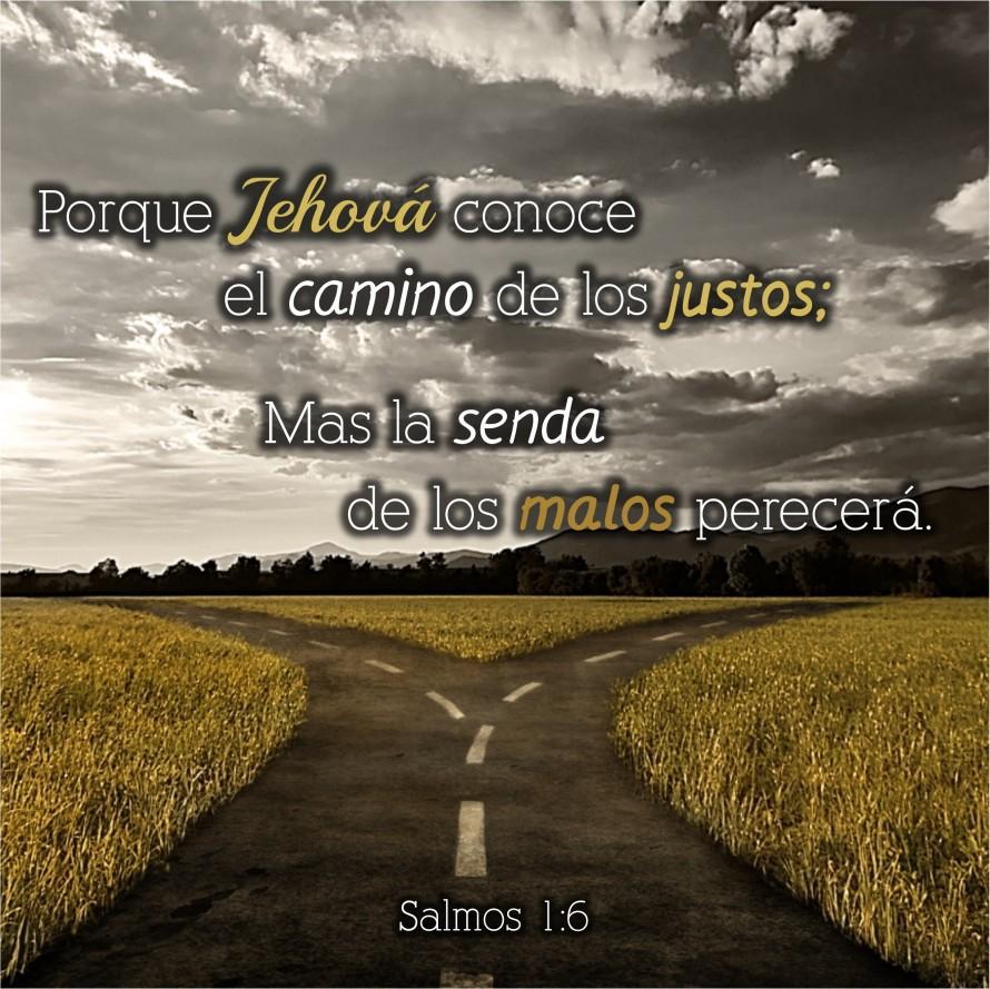 Salmos 1.6 Anexo