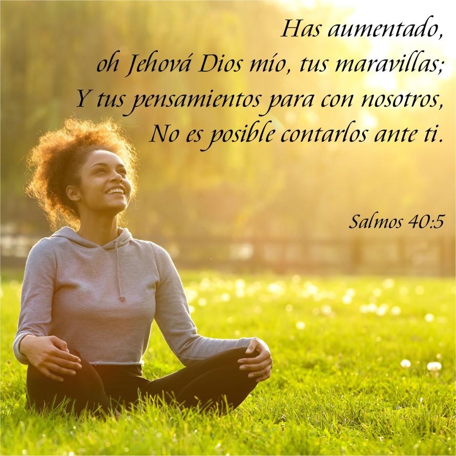 Salmos 40.5 Anexo