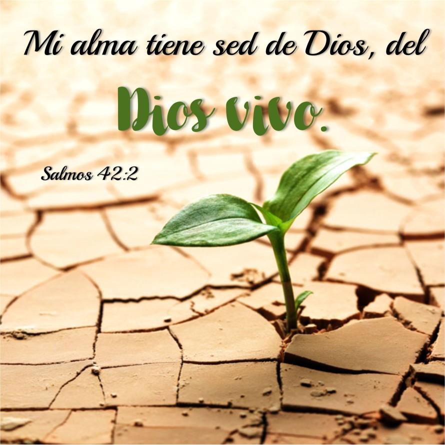 Salmos 42.2 Anexo
