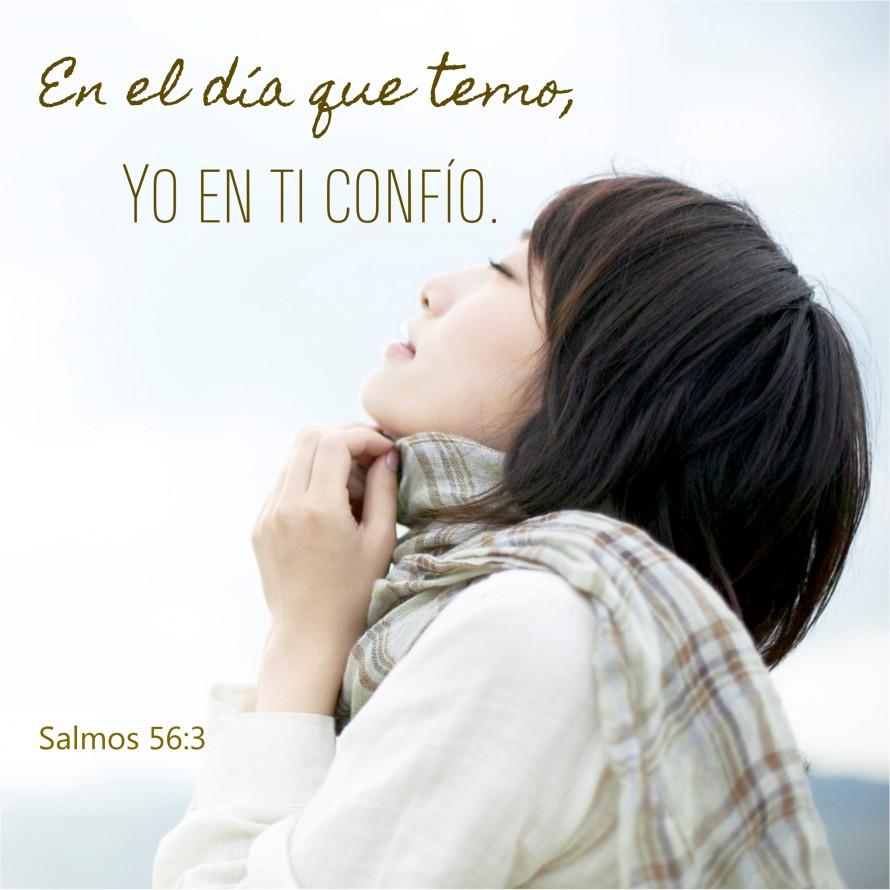 Salmos 56.3 Anexo