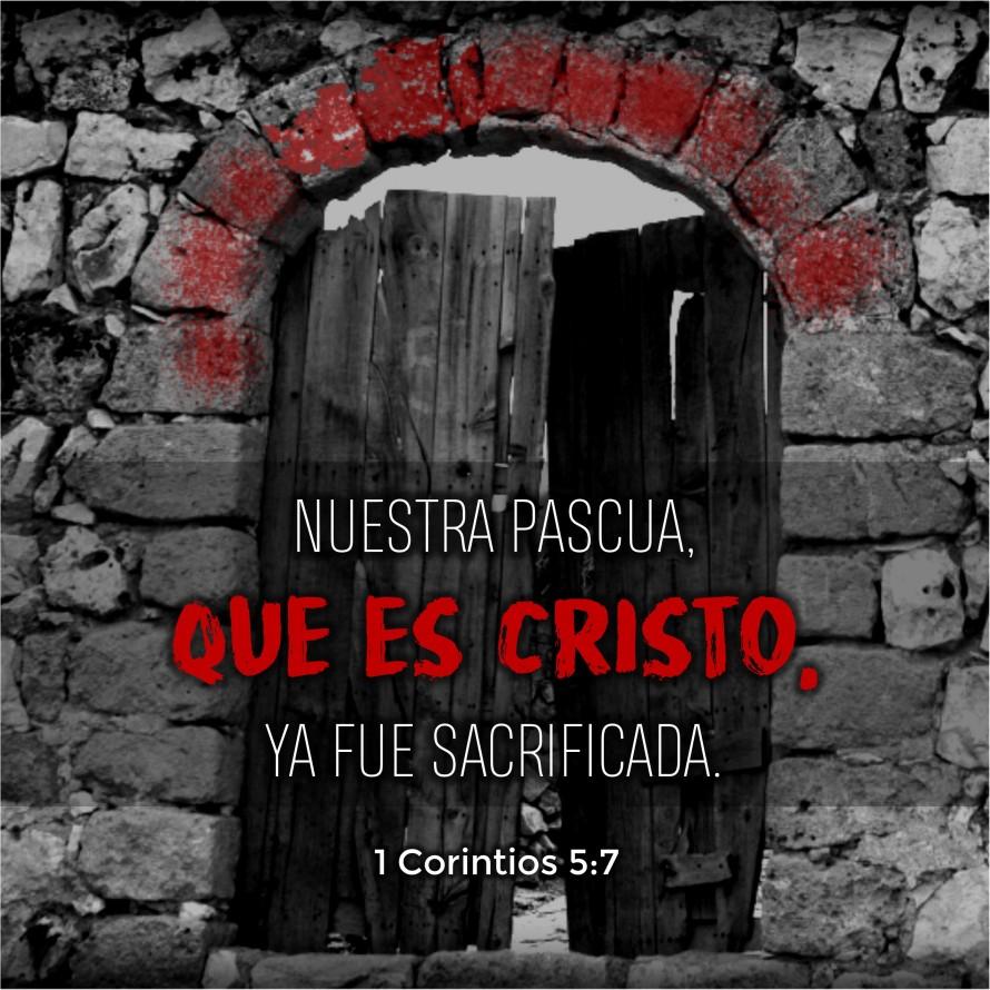 1 Corintios 5.7 Anexo