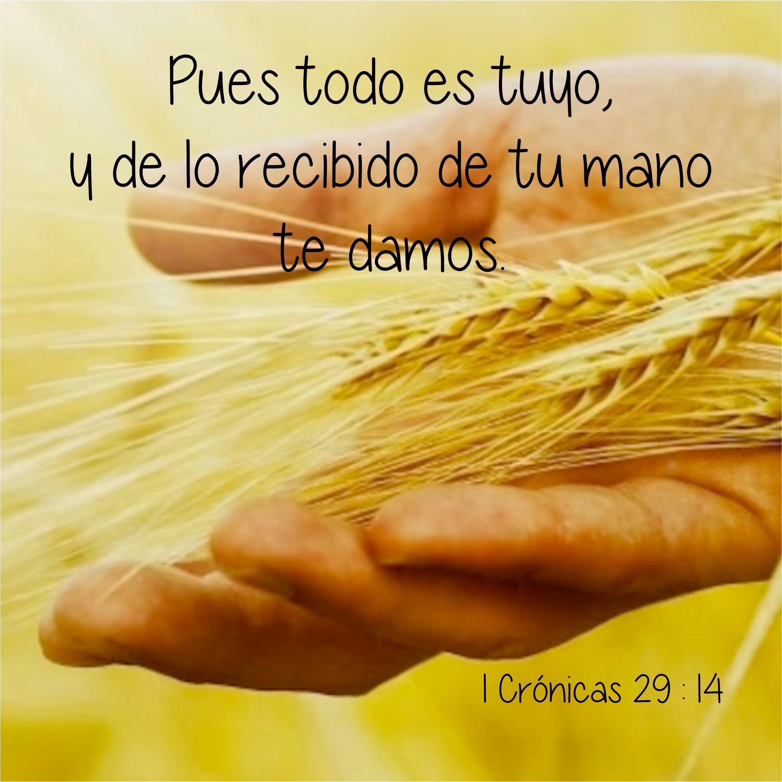 1 Crónicas 29.14 Anexo